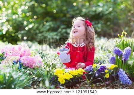 Child planting spring flowers in sunny garden. Little girl gardener plants hyacinth daffodil snowdrop in flower bed. Gardening tools and water can for kids. Family with children work in the backyard.