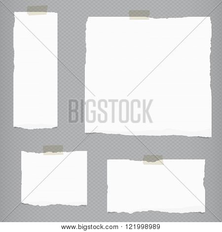 Pieces of torn white blank notebook paper with sticky tape on gray squared background