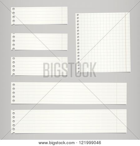 Pieces of torn white lined, squared blank notebook paper sticked on gray background