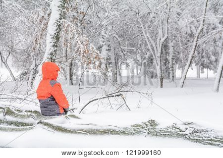 Child And Broke Down Tree Of Snow. Child Sitting Over The Trunk Of A Fallen Tree In The Park In Wint