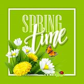 Постер, плакат: Inscription Spring Time on background with spring flowers Spring floral background Spring flowers