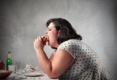 stock photo of fat woman  - Fat woman eating a hamburger - JPG