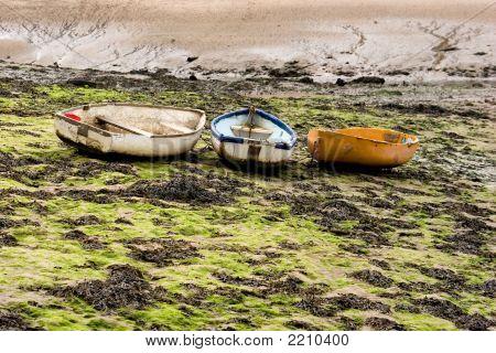 Boats In The Seaweed Pib