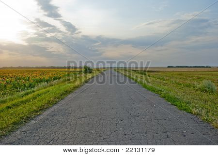 Road Leaving Afar