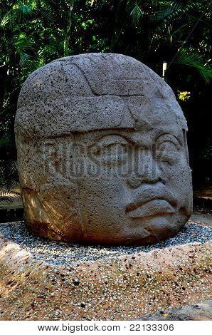 Olmec Head