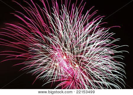 pink and white fireworks