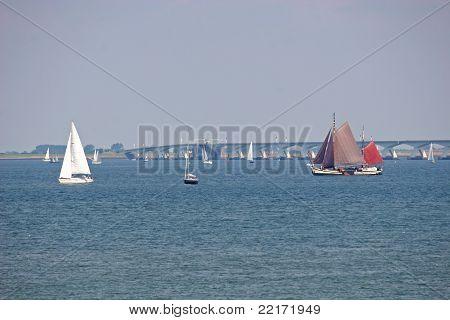 Oosterschelde estuary