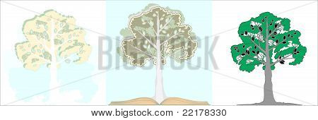 A Tree With A Book