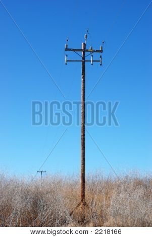 Powerlines 12