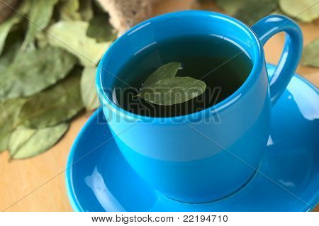 Herbal Tea Made of Coca Leaves