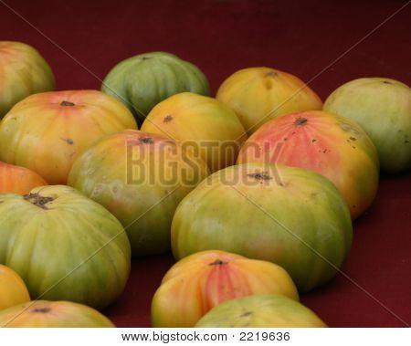 Tomatoes 6