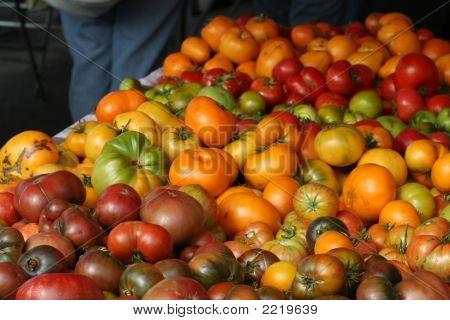 Tomatoes 9
