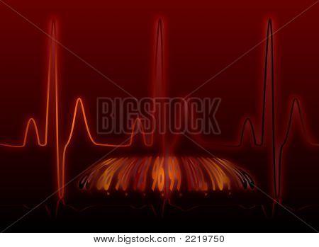 Batimento cardíaco fulgor morno