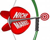 stock photo of niche  - A bow and arrow with the words Niche Market and aiming at a red bulls - JPG