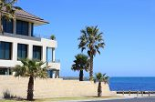 pic of beach-house  - Large modern house by the beach surrounded by palm trees - JPG