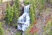 picture of undine  - Undine Falls in Yellowstone National Park with early fall colors - JPG