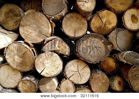 Wood for kindling