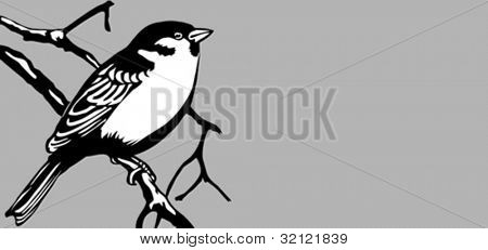 bird silhouette on gray background, vector illustration