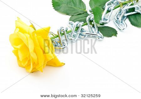 Rose girded chain