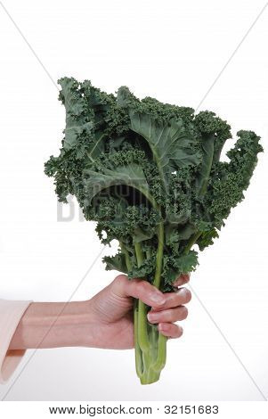 Fresh Bunch Of Kale