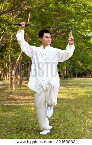 chinese kung fu with sword portrait position