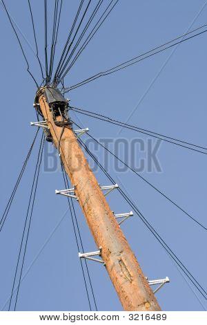 Telefon Pole