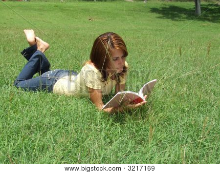 Beautiful Girl Reading A Book, Laying On The Green Grass