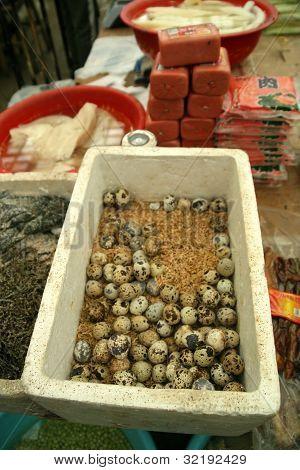 Quail eggs for sale