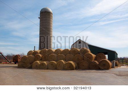 Circular Bales Of Hay