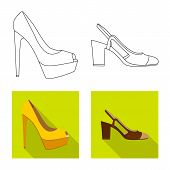 Vector Design Of Footwear And Woman Icon. Set Of Footwear And Foot Vector Icon For Stock. poster