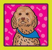 foto of cockapoo  - A cartoon image of an Cockapoo dog created in the folk art tradition - JPG