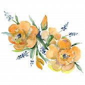 Bouquet Floral Botanical Flowers. Watercolor Background Illustration Set. Isolated Bouquets Illustra poster