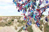 Many glass mascots - evil eye charms hang from a tree in Cappadocia, Pigeon valley, Anatolia, Turkey poster