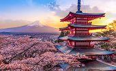 Fujiyoshida, Japan Beautiful View Of Mountain Fuji And Chureito Pagoda At Sunset, Japan In The Sprin poster