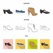 Vector Design Of Footwear And Woman Symbol. Set Of Footwear And Foot Vector Icon For Stock. poster