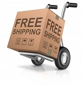 free shipping or delivery for online order of a web shop cardboard box with text ecommerce icon send