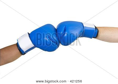 Blue Boxing Gloves