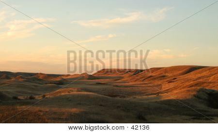 Paisaje de la Prairie