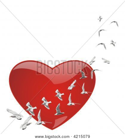 Heart And Pigeons