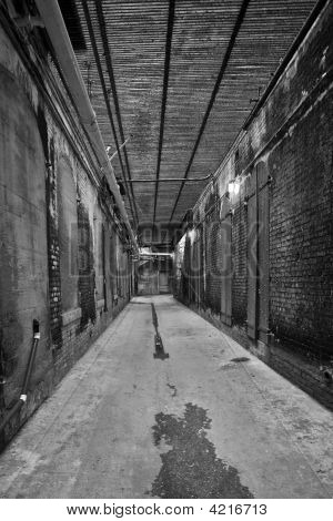Hall Alley Black And White