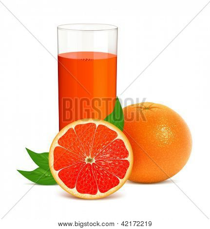 Vector illustration of fresh grapefruits with juice