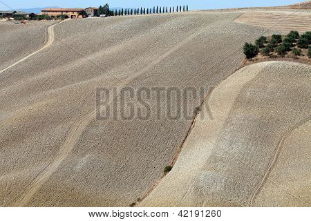 Crete Senesi - The landscape of the Tuscany.