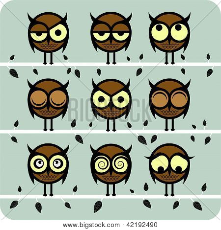 Funny Vector Owl Set