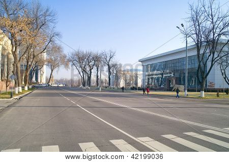 Tashkent, A City Landscape