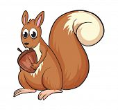 foto of buck teeth  - Illustration of a squirrel on a white background - JPG