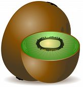 stock photo of seed bearing  - An Illustration of Kiwis with Clipping Path - JPG