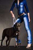 stock photo of friendship belt  - Dog on a chain that keeps a woman in denim clothes - JPG