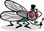 image of stick-bugs  - Cartoon Illustration of Funny Fly or Housefly with Hat and Cane - JPG