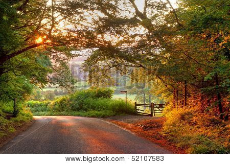 Country lane at sunset