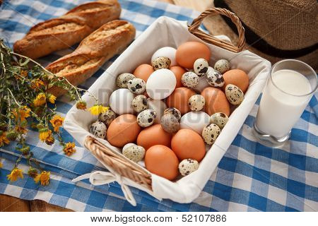 Quail eggs, more nutritious than chicken eggs